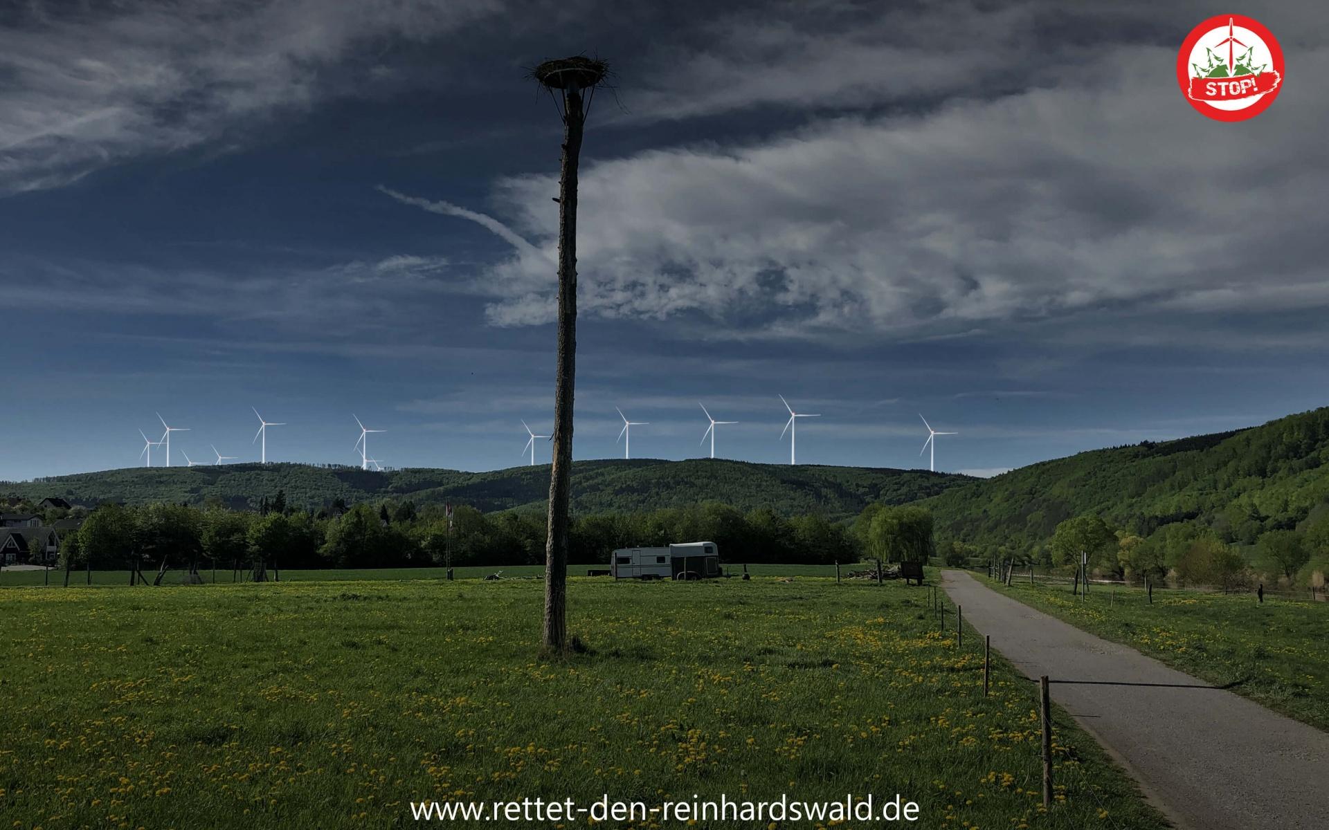 Lippoldsberg Campingplatz
