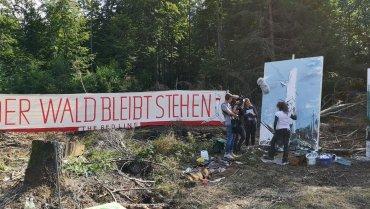 Intervention der Kunst im Reinhardswald