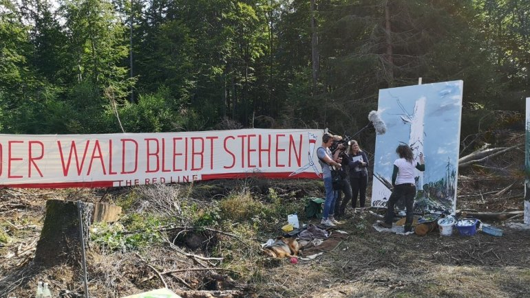 Intervention der Kunst im Reinhardswald