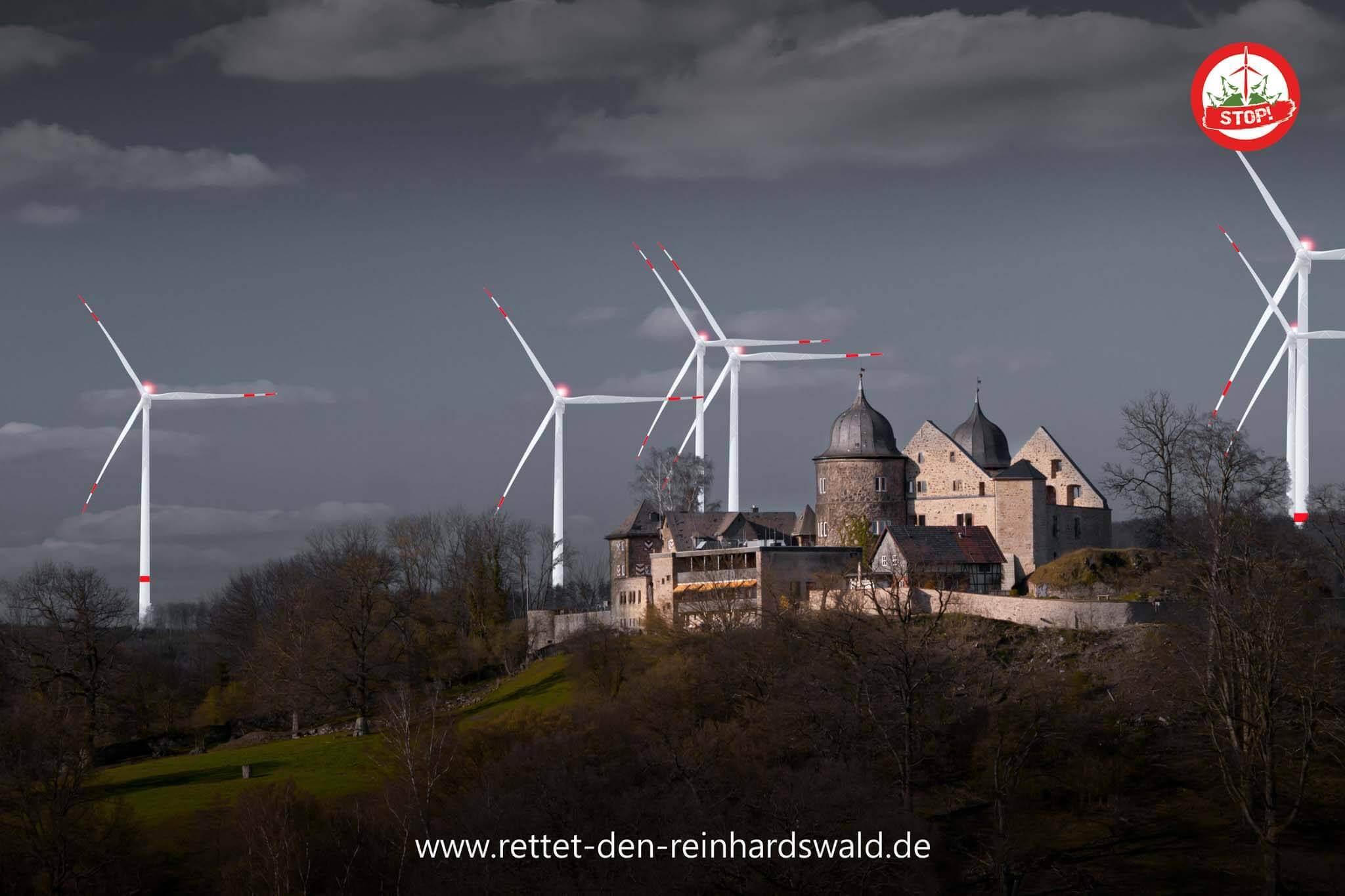 Reinhardswald